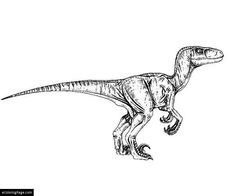 Ausmalbilder Jurassic World Neu 110 Best Jurassic Park Images In 2018 Bilder