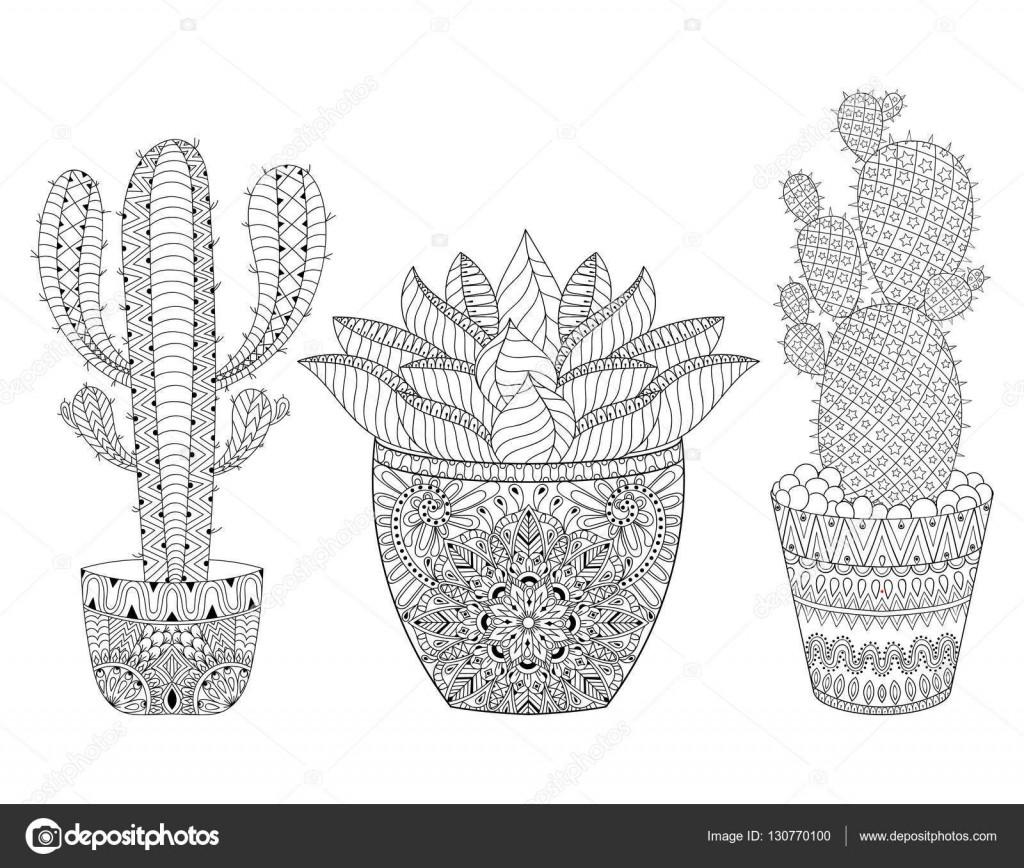 Ausmalbilder Natur Neu Kaktus Zentangle Zestaw Ilustracji Wektorowych Ręka Fotografieren