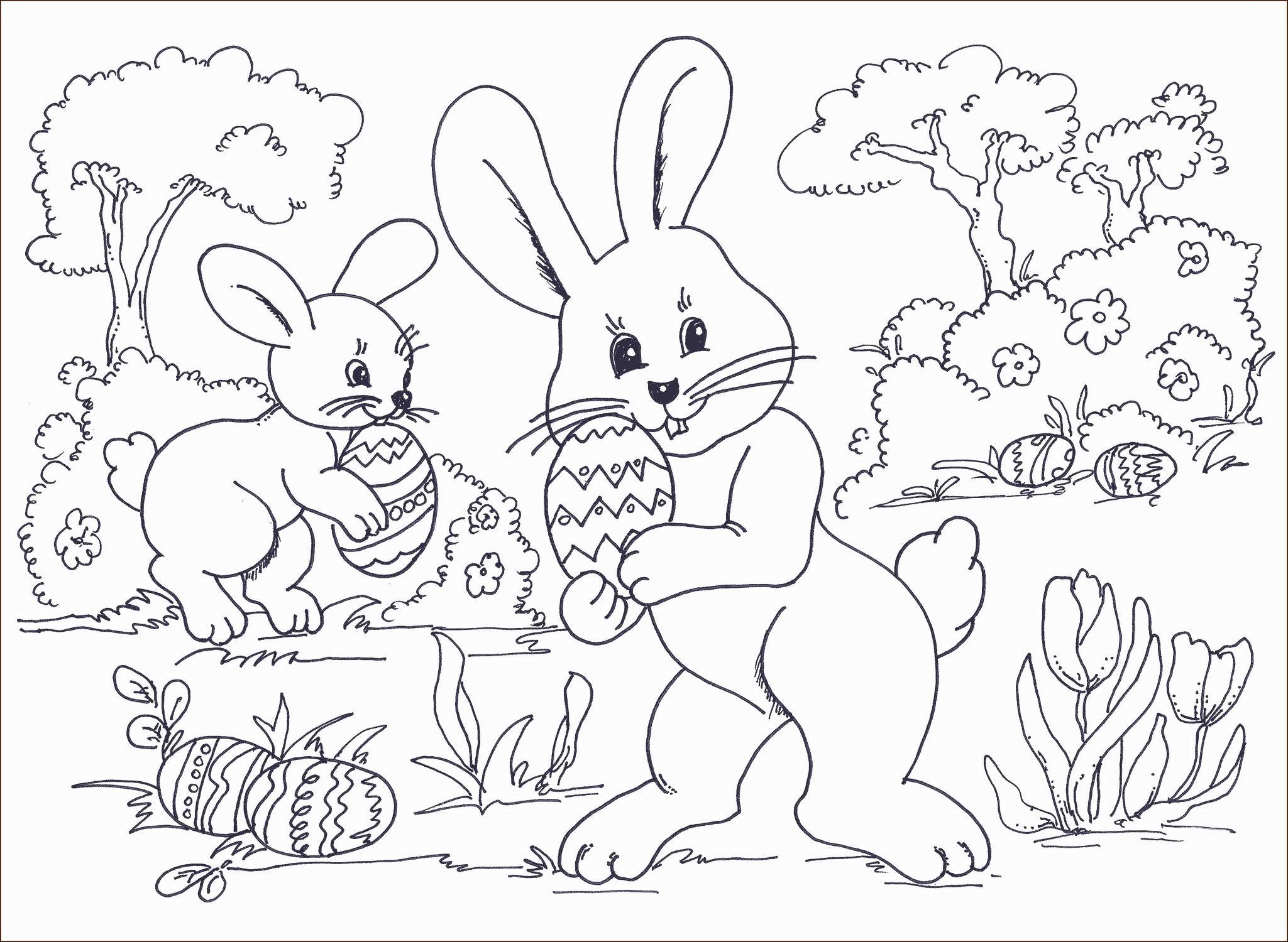 Ausmalbilder Ostern Zum Ausdrucken Das Beste Von Hasen Bilder Zum Ausdrucken Kostenlos Bild Das Bild