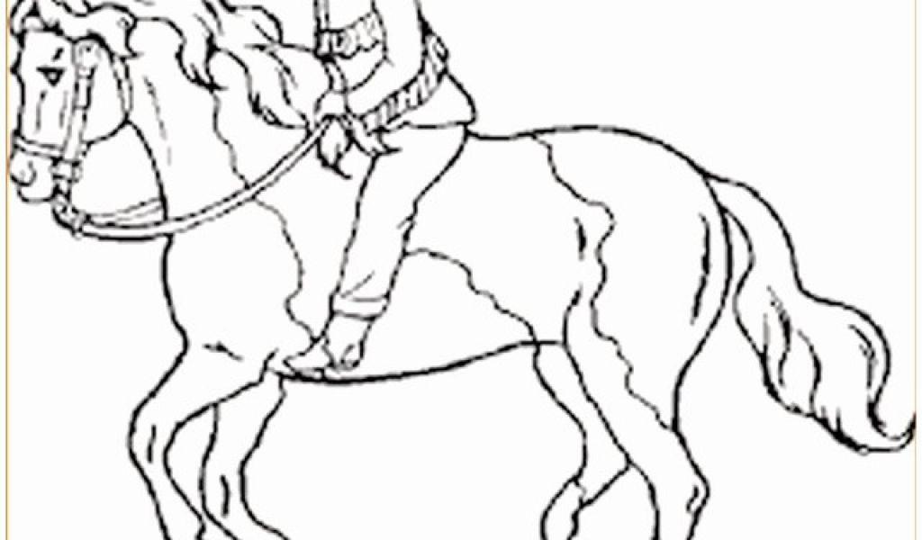 Ausmalbilder Pferde Das Beste Von Ausmalbilder Pferde Springreiten Ideen Schön Ausmalbilder Bild