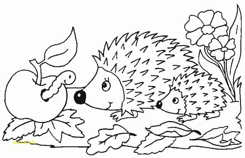 Ausmalbilder Pokemon Raichu Das Beste Von 27 Frisch Baby Pokemon Ausmalbilder Ideen Kostenlose Bild