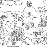 Ausmalbilder Qualle Neu Malvorlagen Meeresbewohner Galerie