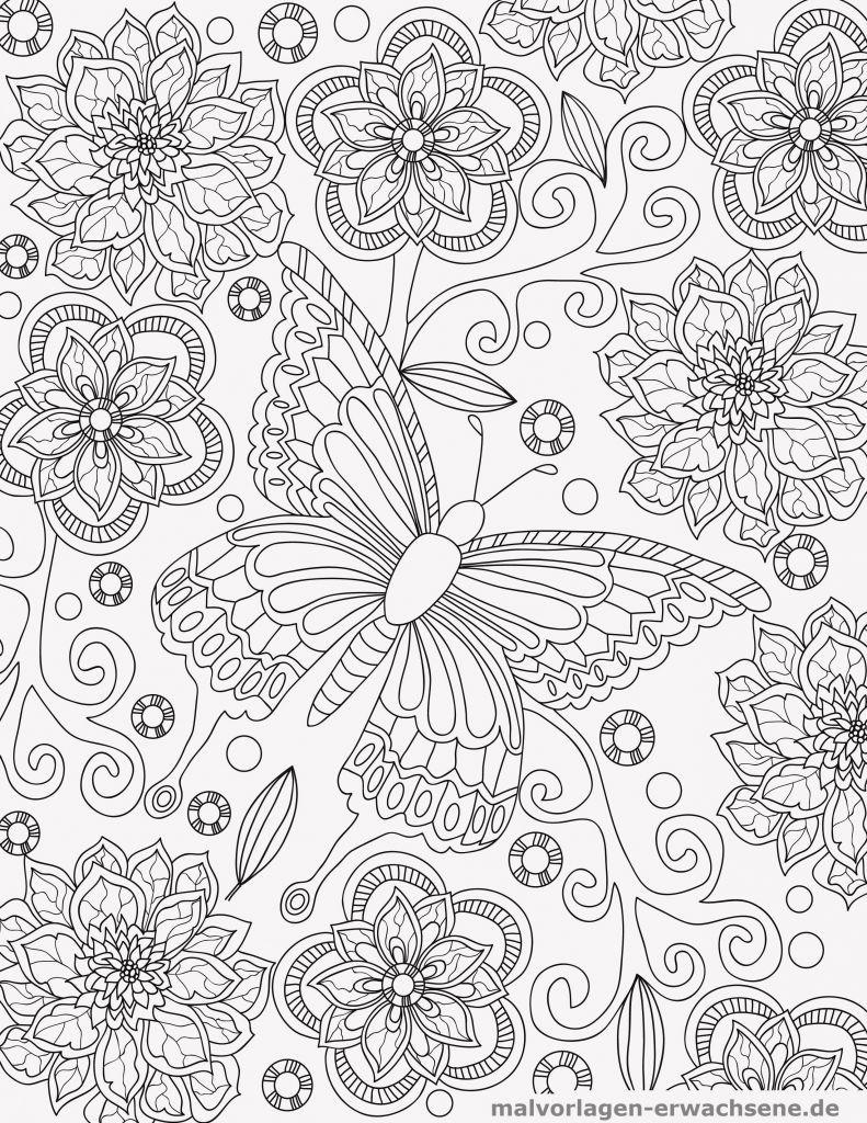 Ausmalbilder Querflöte Einzigartig Gefroren Malvorlagen Fr Erwachsene Wiki Design Fotos