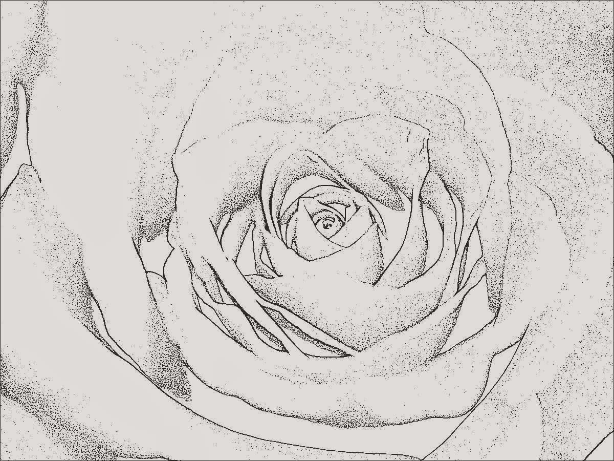 Ausmalbilder Rosen Genial 30 Einzigartig Ausmalbilder Rosen Mit Herz Neuste Bild