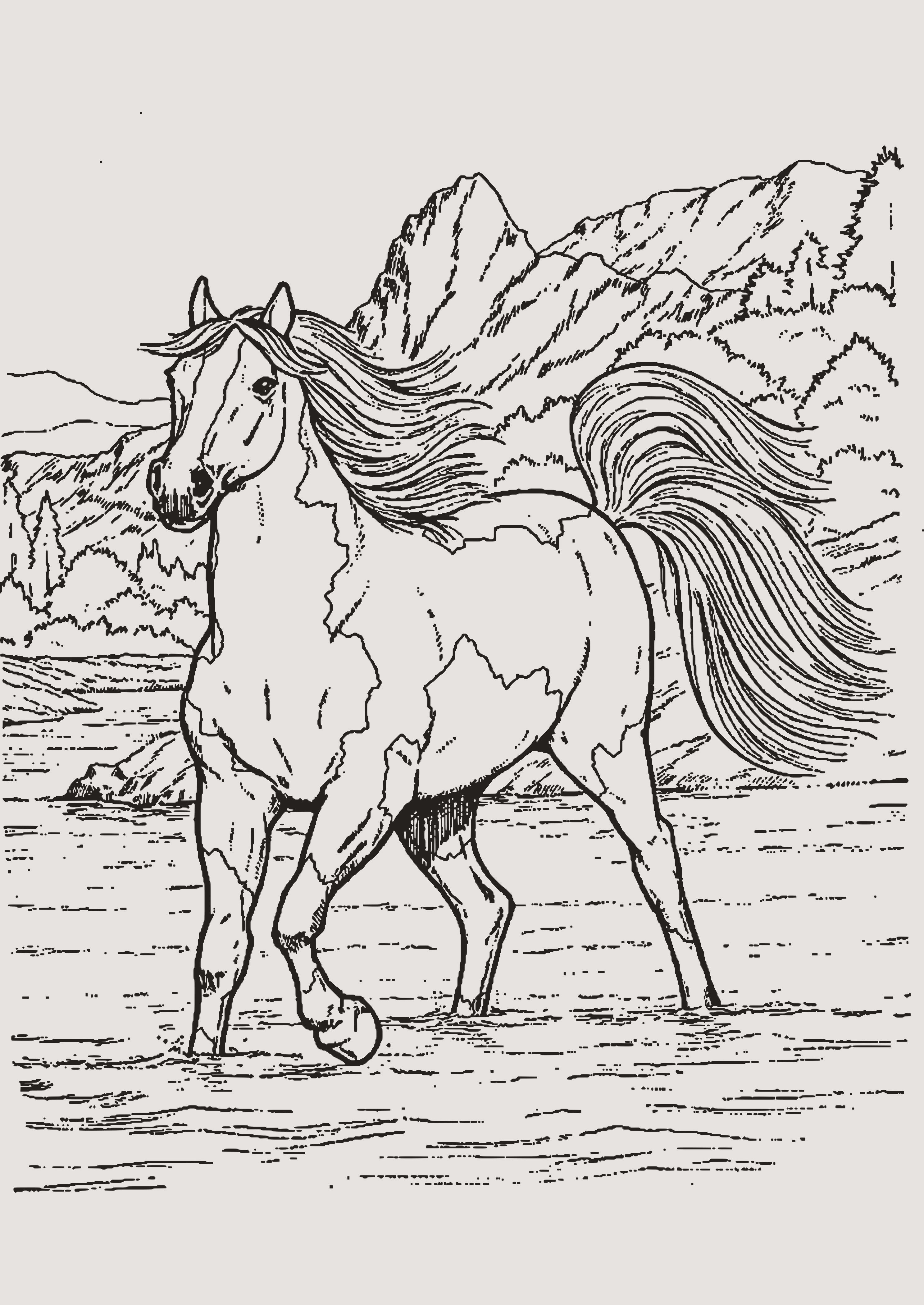 Ausmalbilder Tiere Kostenlos Genial 24 Ausmalbilder Tiere Pferde Bilder