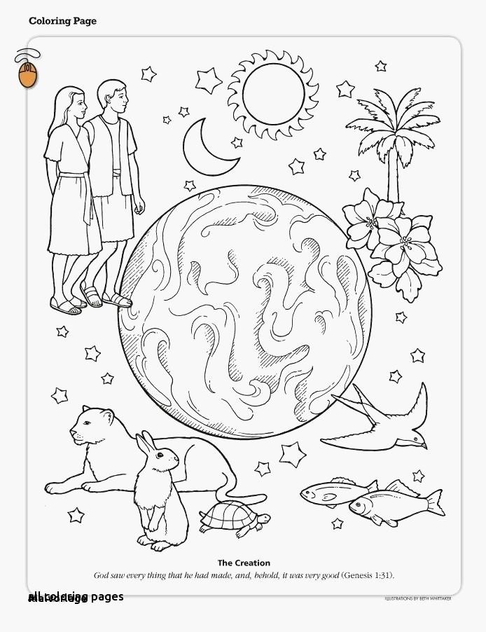 ausmalbild wimmelbild zoo - cartoon-bild
