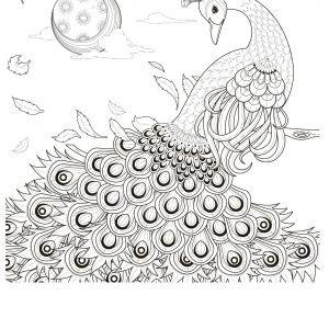 ausmalbilder unterwasser genial ausmalbilder tiere im wasser einzigartig ausmalbilder einhorn