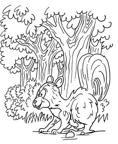 Ausmalbilder Wald Das Beste Von Disney Mandala Malvorlagen Wald Wiki Design Sammlung