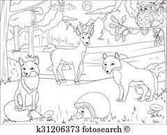 Ausmalbilder Wald Inspirierend Arktyka Zwierzęta Koloryt Książka Oświatowy Gra Clip Art Sammlung
