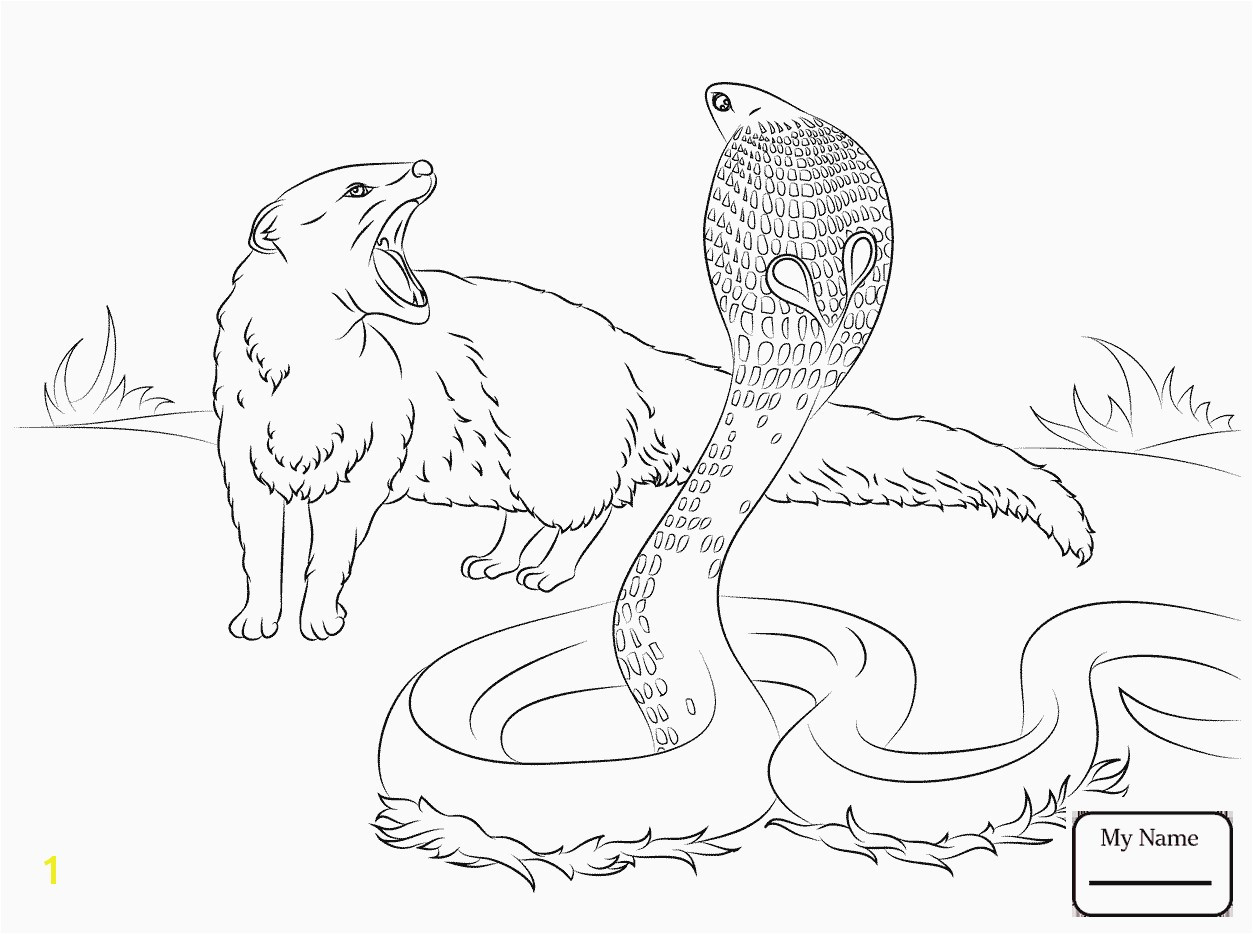 Ausmalbilder Zoo Genial 29 Zoo Animals Printable Coloring Pages Download Coloring Das Bild