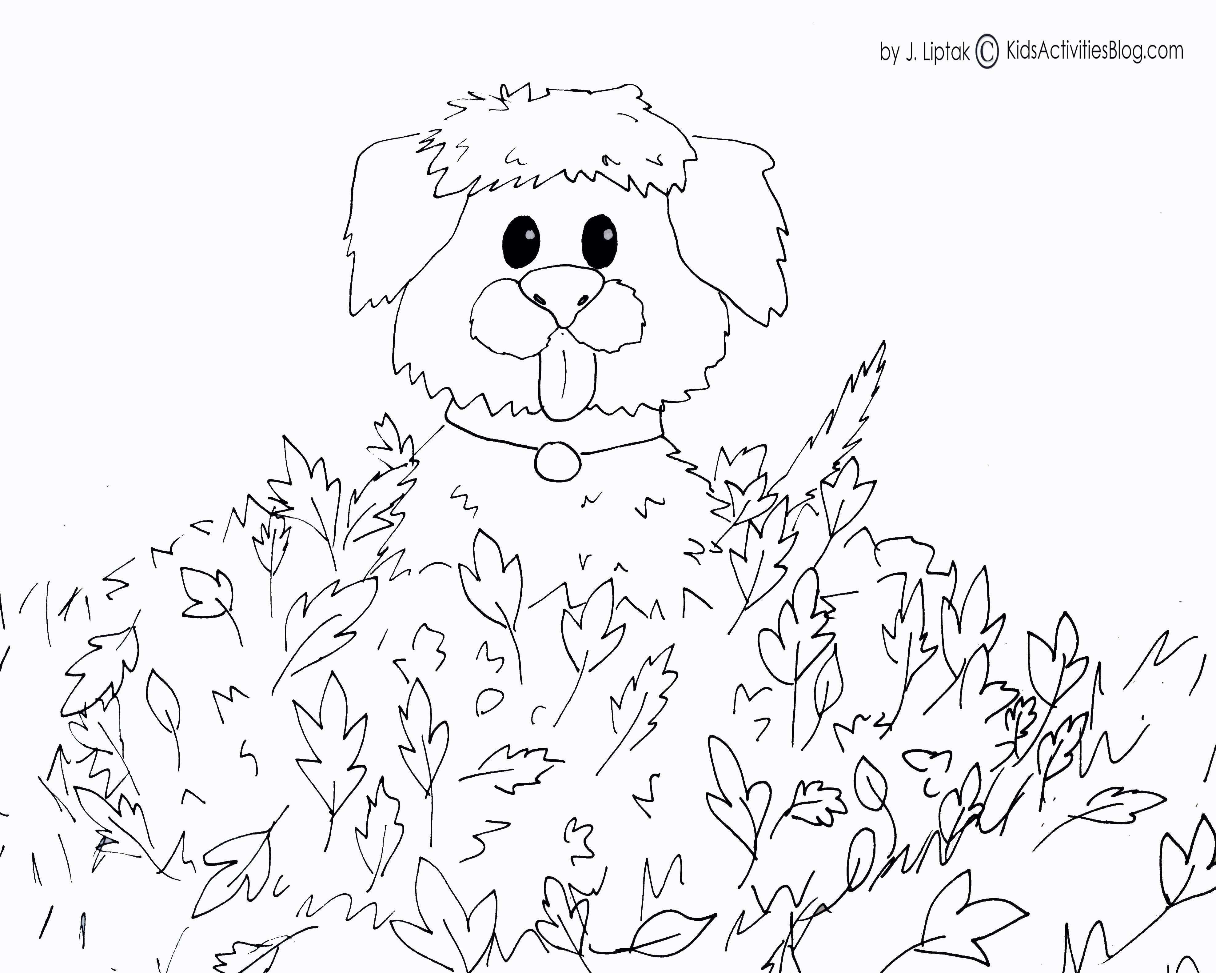Ausmalbilder Zoo Neu Coloring Pages for Kid New Olchis Ausmalbilder Bilder Zum Fotos