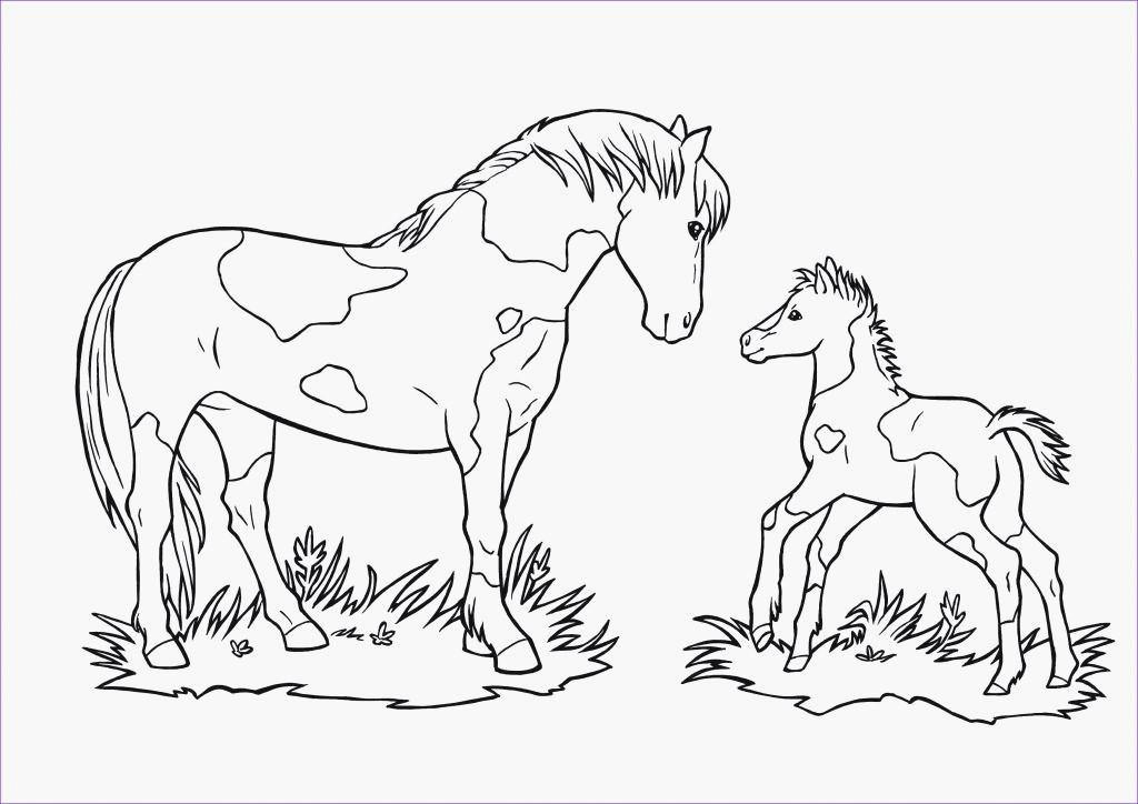 Ausmalbilder Zum Ausdrucken Einhorn Einzigartig Einhorn Vorlagen Ausdrucken 40 Ausmalbilder Pegasus Einhorn Bilder