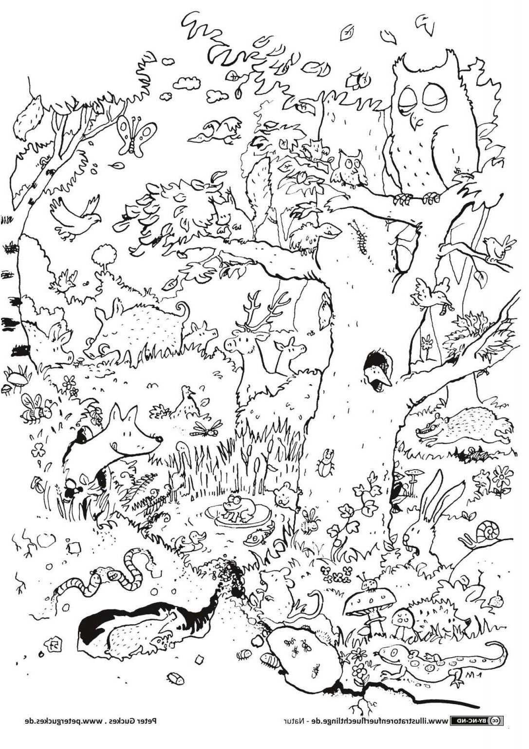 Malvorlagen Pokemon Glurak Genial Pokemon Bilder Zum Ausdrucken Gemälde Frei Newsletter Galerie