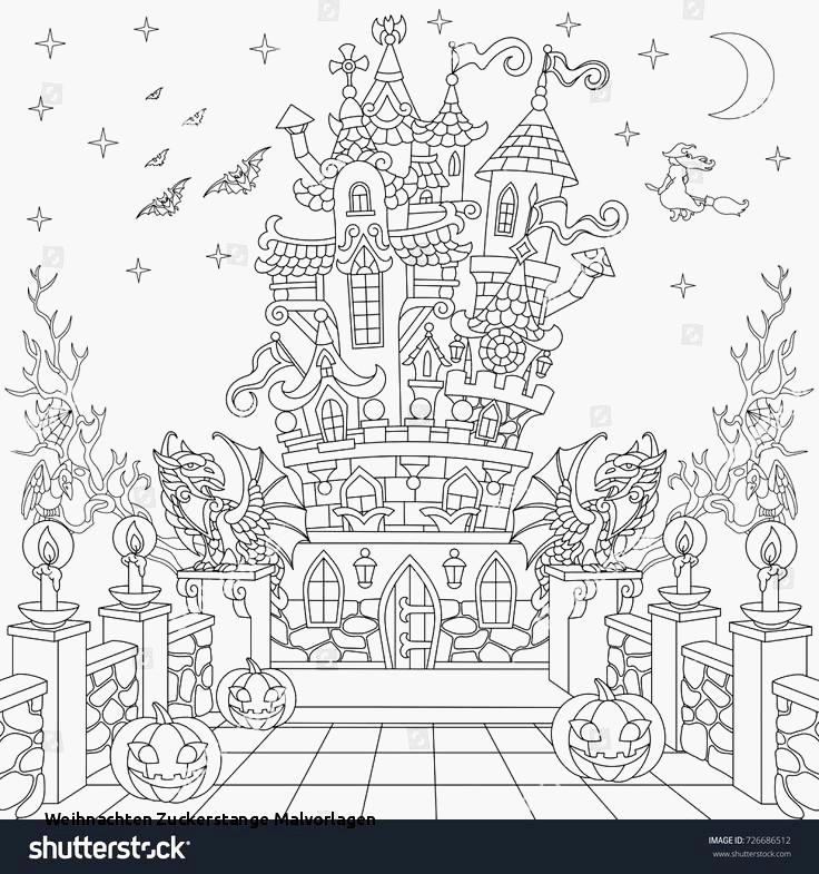 Ausmalbilder Für Erwachsene Weihnachten Frisch Die15 Beste Ausmalbild Für Erwachsene Concept Galerie
