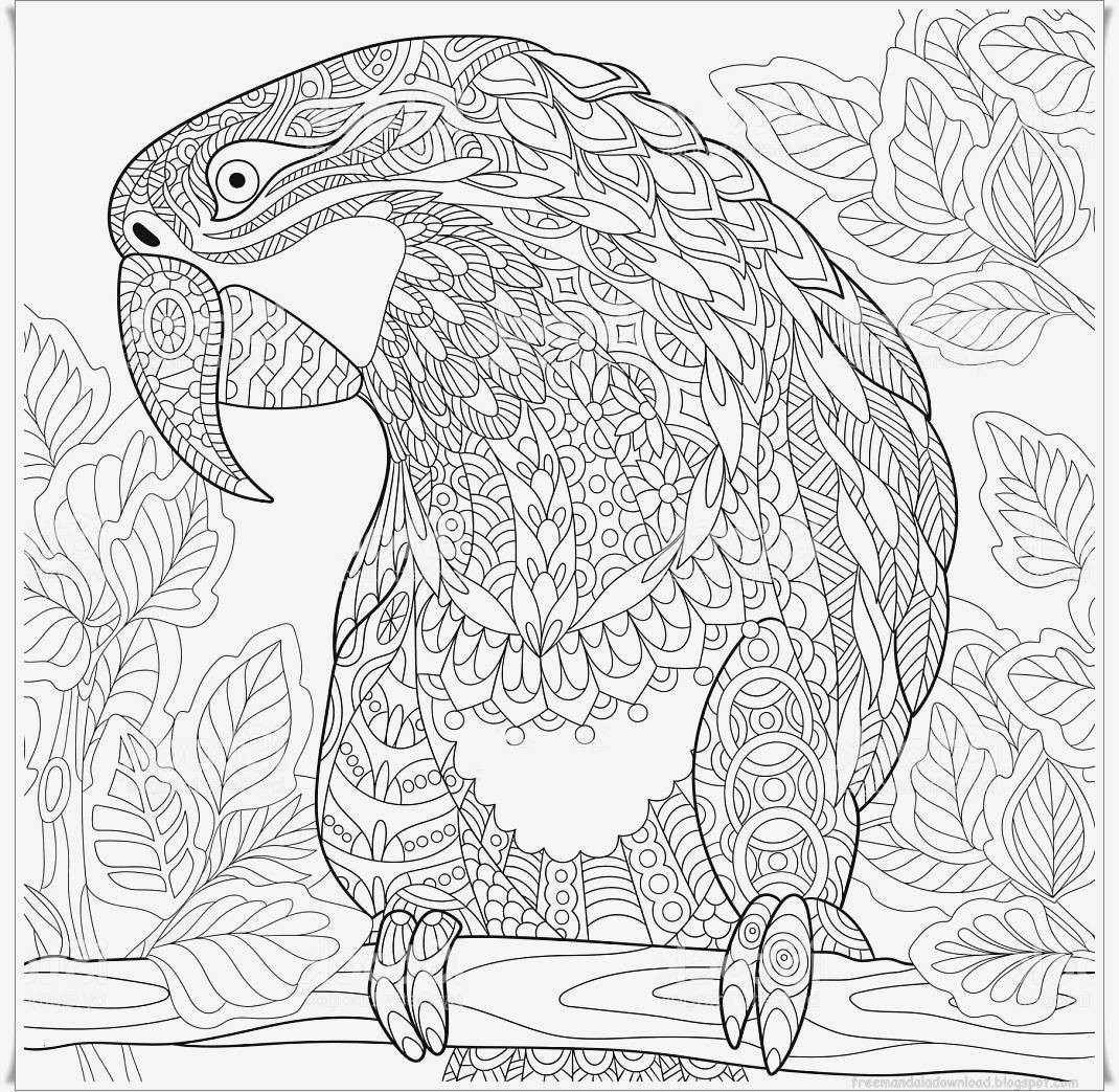 Ausmalbilder Für Erwachsene Weihnachten Inspirierend Druckbar Ausmalbilder Fur Erwachsene Papagei Jahrige Bilder