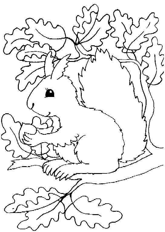 Ausmalbilder Für Kleinkinder Weihnachten Neu Eversonpoe Page 242 Of 564 Garten Ideen Fotografieren