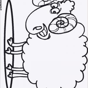 Ausmalbilder.info Weihnachten Inspirierend Frisch Ausmalbilder Info Fotos