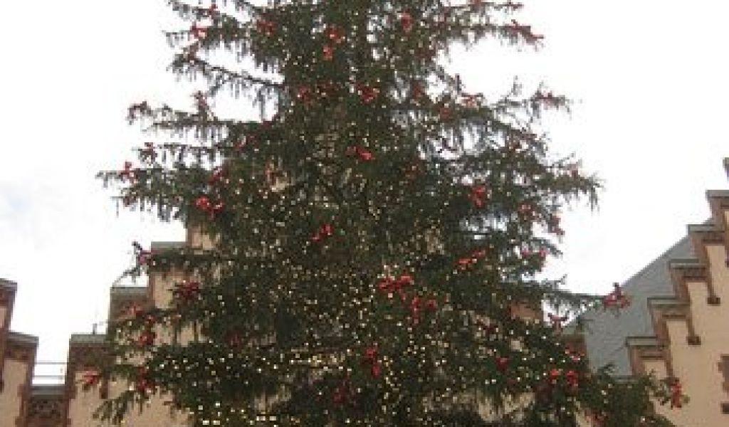 Ausmalbilder Weihnachten Baum Neu Baum Schön Baum Picture Frankfurt Christmas Market Galerie