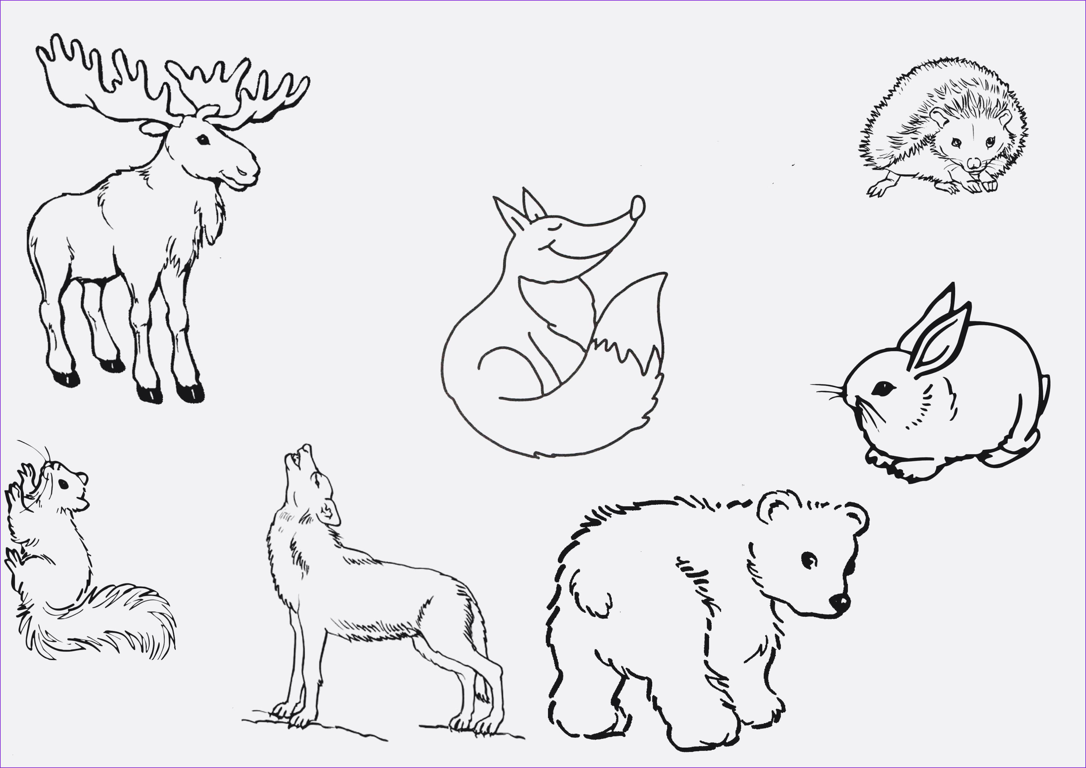 Ausmalbilder Weihnachten Disney Kostenlos Inspirierend Ausmalbilder Zum Drucken Kostenlos 10 Best Ausmalbilder Galerie
