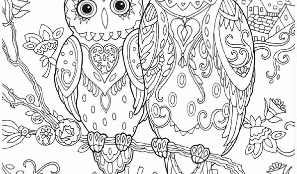 Ausmalbilder Weihnachten Eule Neu Coloriage Zen Free Time Fun Pinterest Druckfertig Das Bild