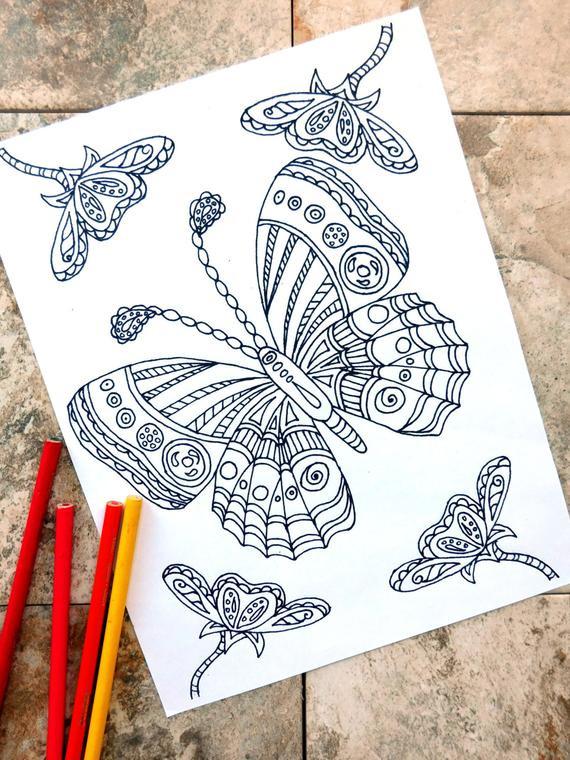 Ausmalbilder Weihnachten Nussknacker Inspirierend Malvorlage Echinacea Das Bild