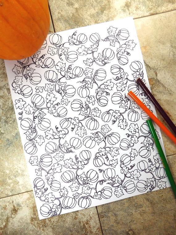 Ausmalbilder Weihnachten Nussknacker Neu Malvorlage Echinacea Bilder
