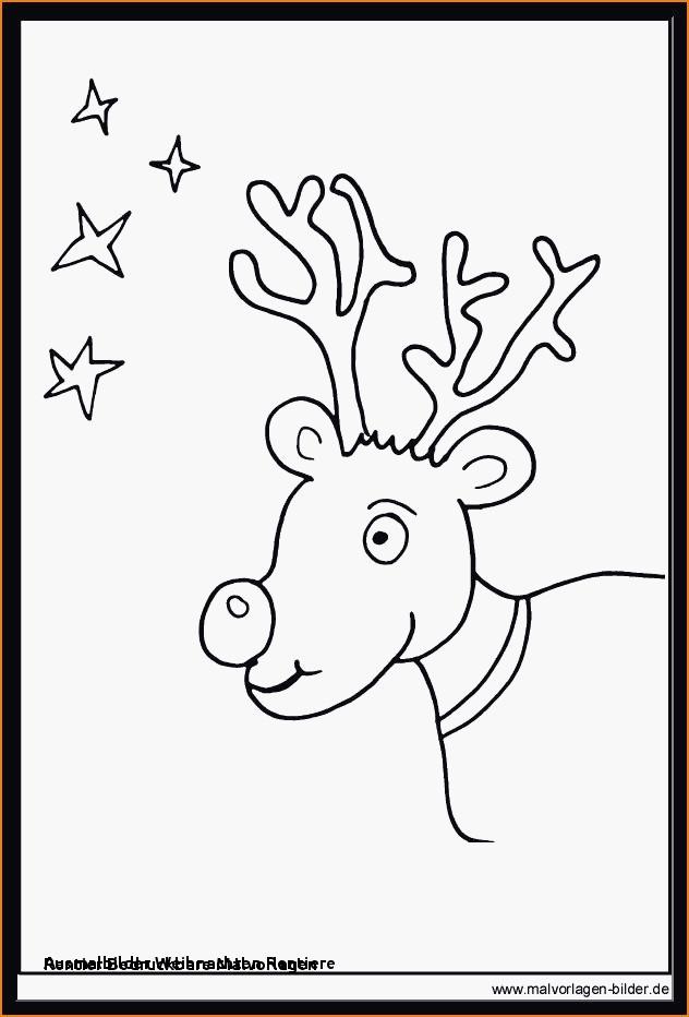 Ausmalbilder Weihnachten Rudolph Genial Weihnachts Ausmalbilder Rentier 40 Malvorlagen Gratis Fotografieren
