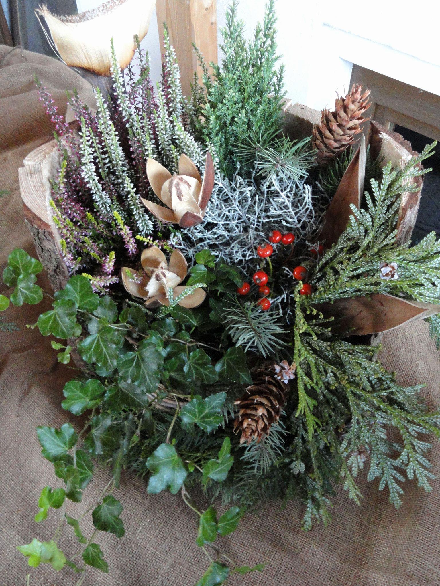 Ausmalbilder Weihnachten Tannenbaum Mit Geschenken Frisch 17 Luxus Vorlage Tannenbaum Bild Fotografieren
