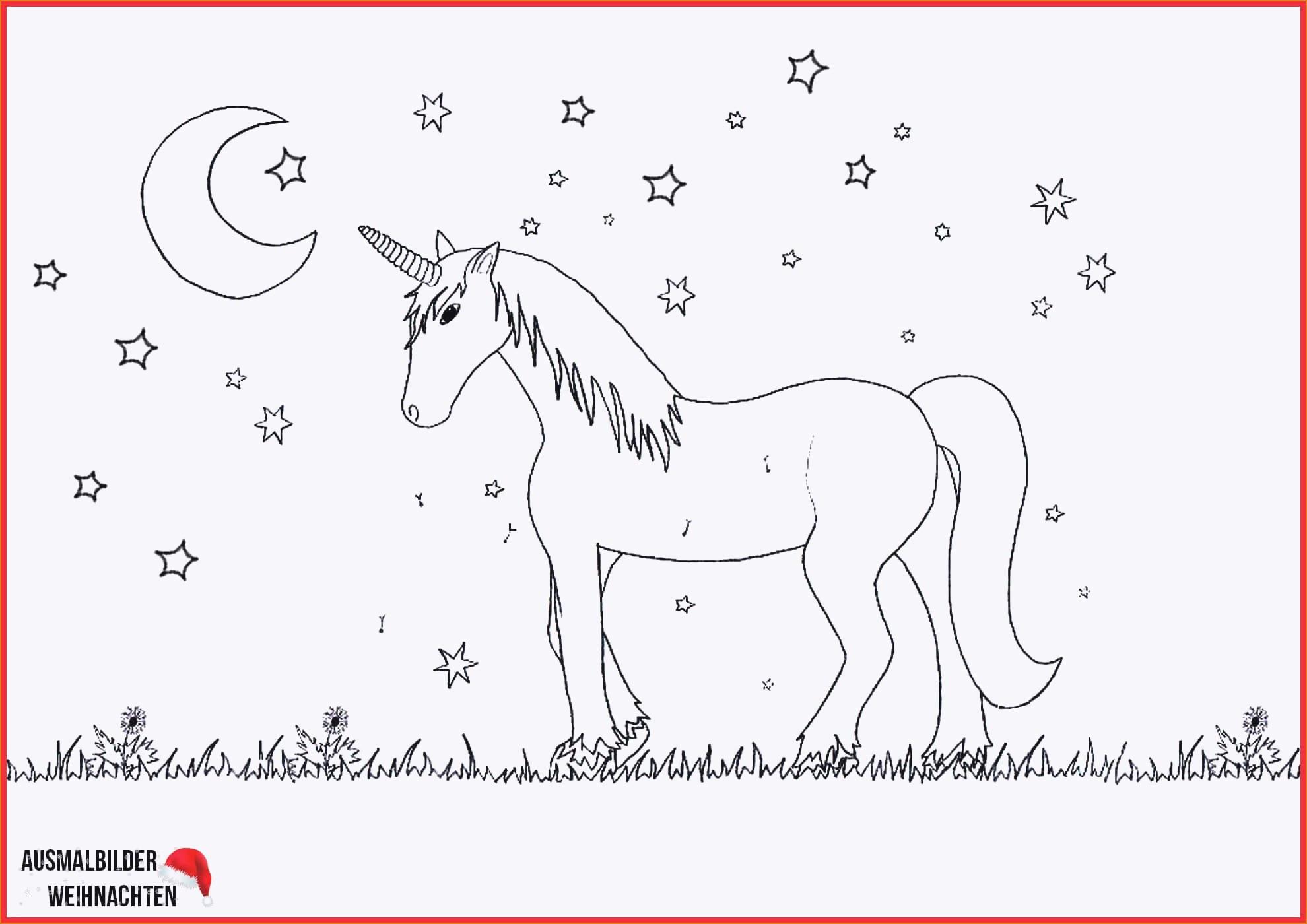 Ausmalbilder Zu Weihnachten Zum Ausdrucken Inspirierend Pferde Bilder Zum Ausdrucken Genial Malvorlagen Igel Best Fotografieren