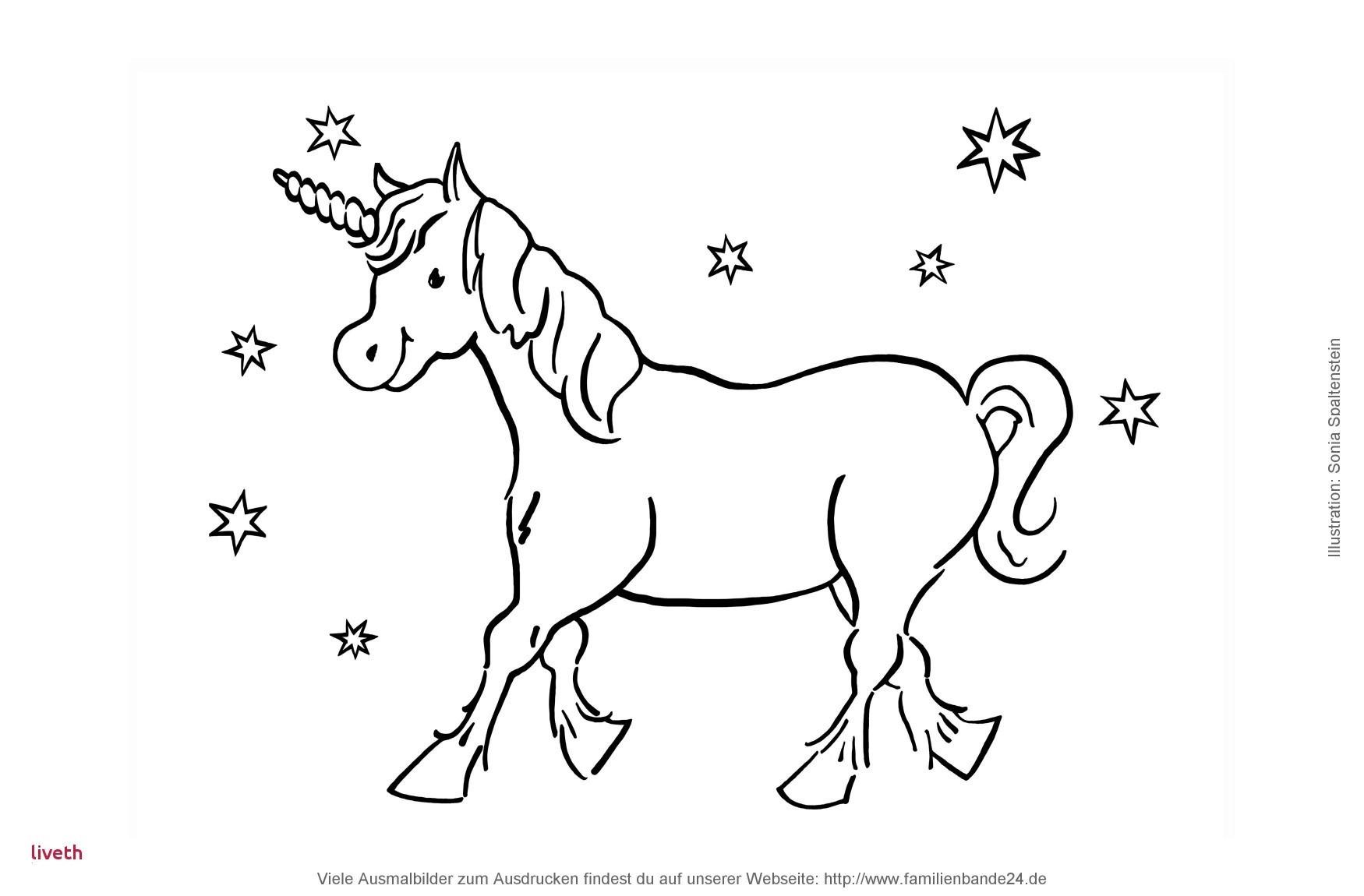 Malvorlagen Weihnachten Din A4 Das Beste Von Malvorlagen Zu Weihnachten Und Advent Regarding Malvorlage Sammlung