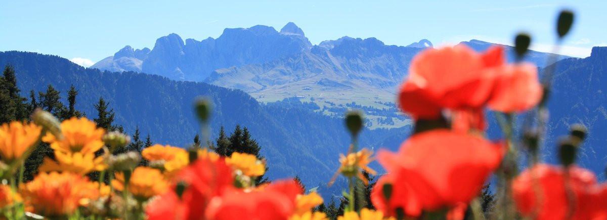 Schöne Ausmalbilder Zu Weihnachten Frisch Urlaub In Den Dolomiten Grödnertal Val Gardena Gröden Bilder