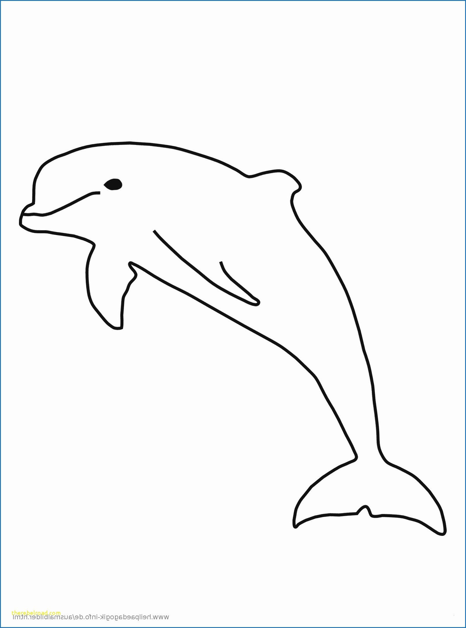 Ausmalbilder Prinzessin Meerjungfrau Neu Ausmalbilder Meerjungfrau Mit Delfin Mandala Ausmalen Jxdu Fotos