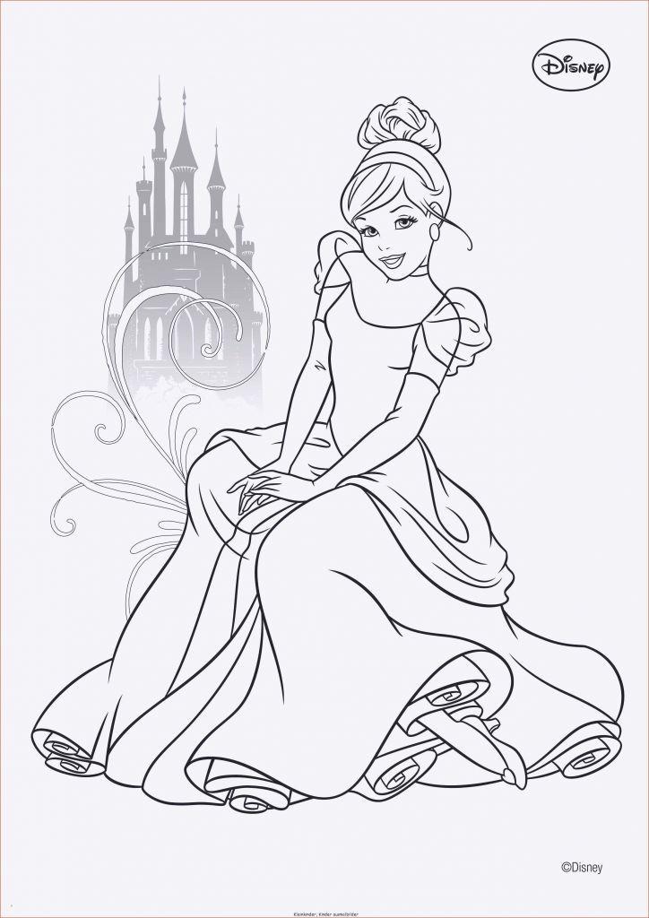 Ausmalbilder Prinzessin Schloss Neu 100 Disney Schloss Malvorlage Etdg Fotografieren