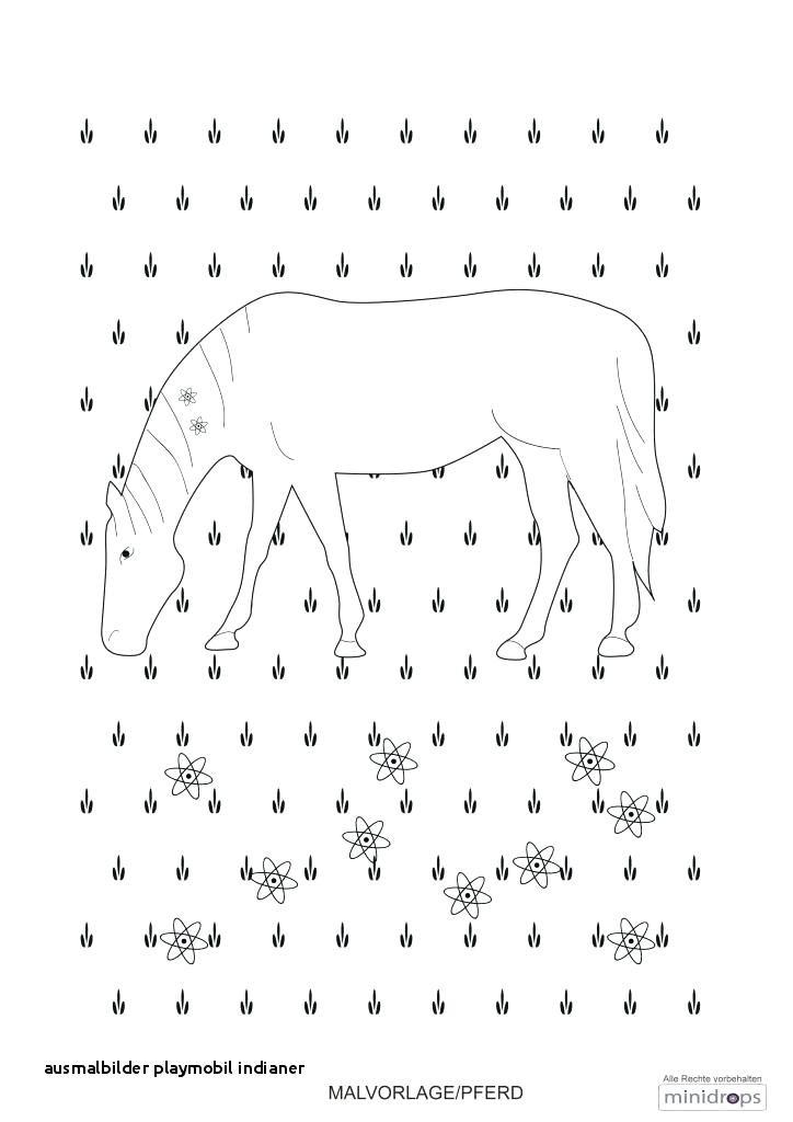 Malvorlagen Cowboy Frisch Ausmalbilder Playmobil – Willflowers Gdd0 Bild