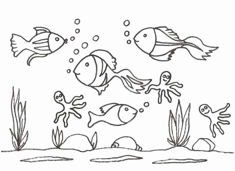 Malvorlagen Fische Das Beste Von Fische Schablonen Ausdrucken Genial 100 Ideen Schablone E6d5 Fotografieren