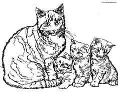 Malvorlagen Katzen Frisch Die 23 Besten Bilder Von Malvorlage Katze In 2019 Gdd0 Stock