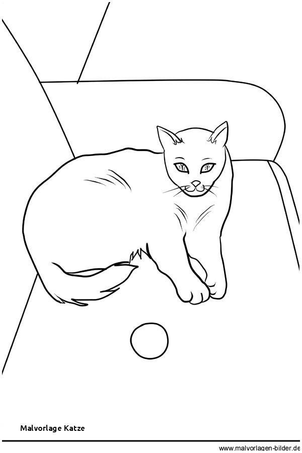 Malvorlagen Katzen Inspirierend Malvorlage Katze Schön Ausmalbild Katze attachmentg Title Ffdn Das Bild