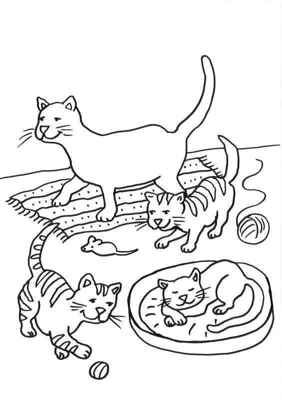 Malvorlagen Katzen Neu Malvorlage Katze Schön Schöne 20 Ausmalbilder Zum Ausdrucken Xtd6 Stock