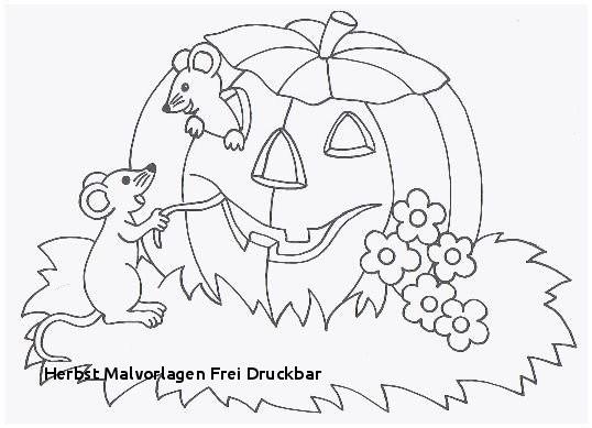 Malvorlagen Winnie Pooh Einzigartig 315 Kostenlos Herbstbild Ausmalen O2d5 Fotografieren