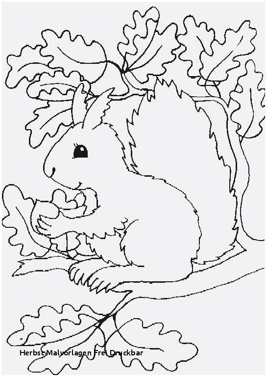 Malvorlagen Winnie Pooh Inspirierend 315 Kostenlos Herbstbild Ausmalen Tqd3 Stock